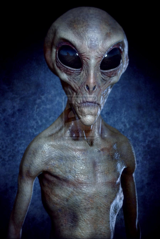 Alien Grey  Alien